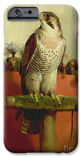 Falcon iPhone Cases - Falcon iPhone Case by Sir Edwin Landseer