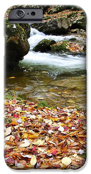 Fall Color Rushing Stream iPhone Case by Thomas R Fletcher