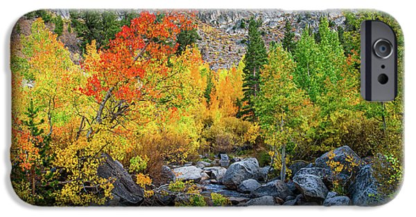 Red Rock iPhone Cases - Fall Colors Along Bishop Creek iPhone Case by Lynn Bauer