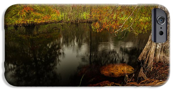 Water Colors Pyrography iPhone Cases - Fall Colors around the Pond iPhone Case by Rick Strobaugh