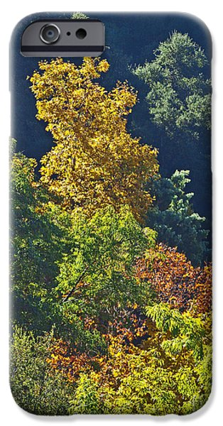 Autumn iPhone Cases - Fall colors CAL53 iPhone Case by Howard Stapleton
