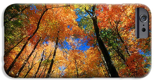 Crops iPhone Cases - Fall colors  iPhone Case by Davids Digits