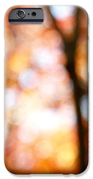 Fall colors iPhone Case by Les Cunliffe