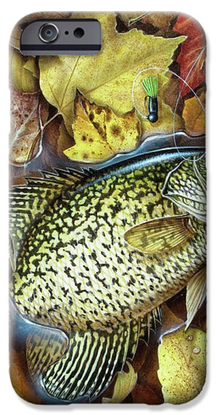 Fall Crappie iPhone Case by JQ Licensing
