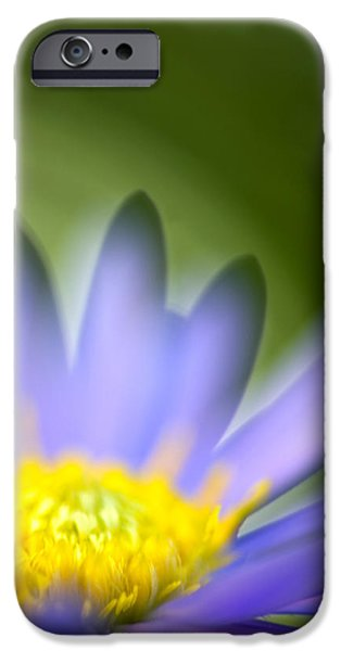 Fall Flower iPhone Case by Silke Magino