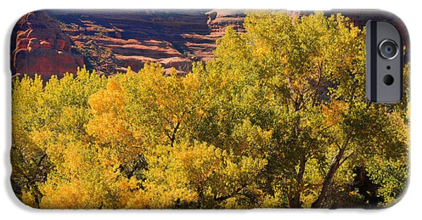 Thoreau iPhone Cases - Fall In The Arches iPhone Case by Lawrence Christopher