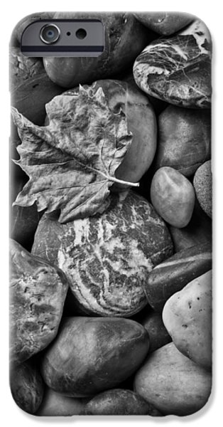 Fall iPhone Cases - Fall Leaf On Stones iPhone Case by Garry Gay