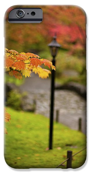 Fall iPhone Cases - Fall Serenity iPhone Case by Mike Reid