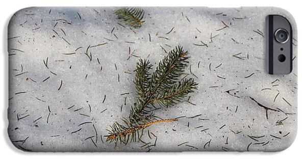 Wintertime iPhone Cases - Fallen Evergreen Branch Tips iPhone Case by Jari Hawk