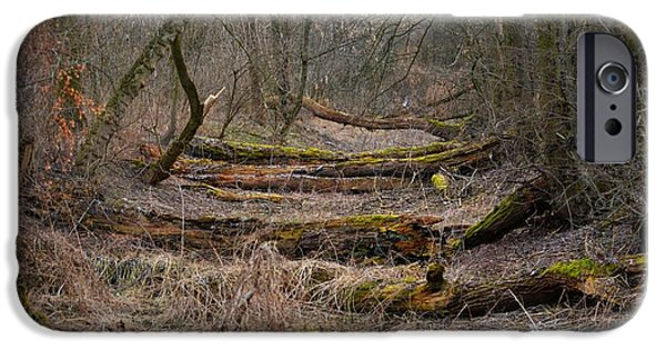 Abstract Digital Pastels iPhone Cases - Fallen Tree Trunks in the Forest Path H b iPhone Case by Gert J Rheeders