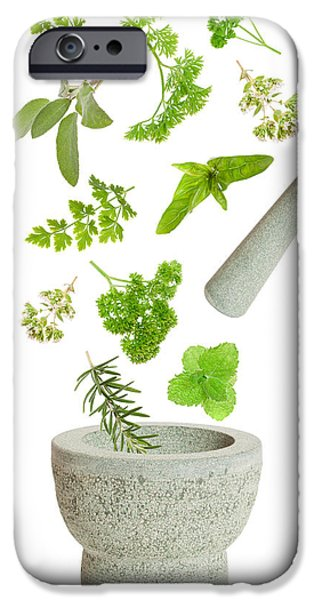 Falling iPhone Cases - Falling Herbs iPhone Case by Amanda And Christopher Elwell