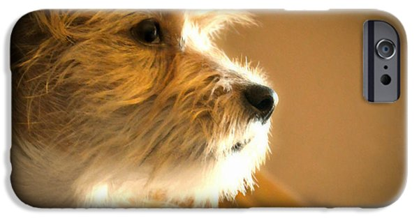 Puppies Digital Art iPhone Cases - Far Away Eyes iPhone Case by Wendy Martinez