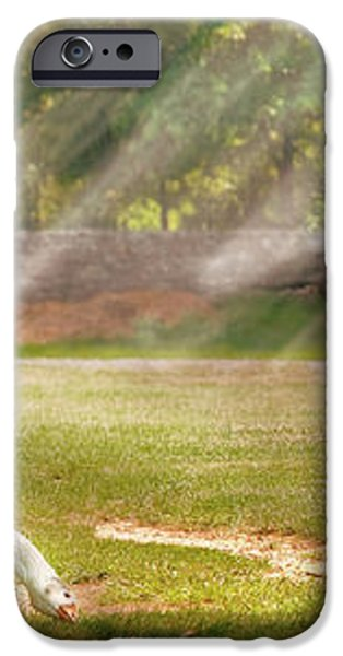 Farm - Geese -  Birds of a Feather - Panorama iPhone Case by Mike Savad