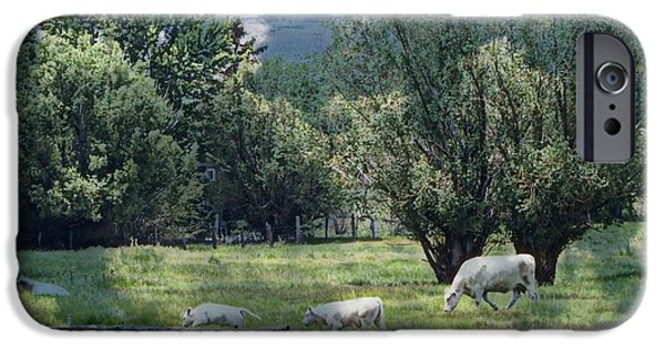 Tree Art Print iPhone Cases - Farmland iPhone Case by Bobbee Rickard