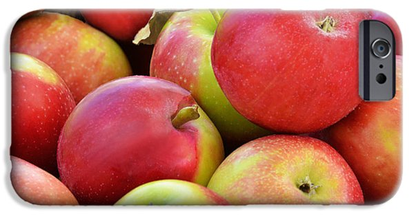 Farmstand iPhone Cases - Farmstand  Fresh-picked  Apples iPhone Case by Regina Geoghan