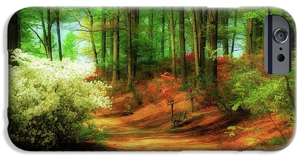 Forest Digital iPhone Cases - Favorite Path iPhone Case by Lois Bryan