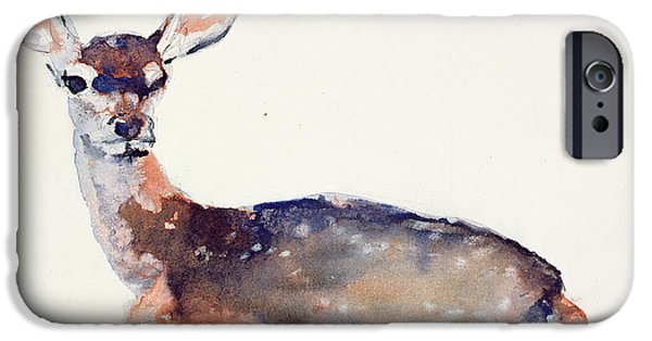 Contemporary Art Drawings iPhone Cases - Fawn iPhone Case by Mark Adlington