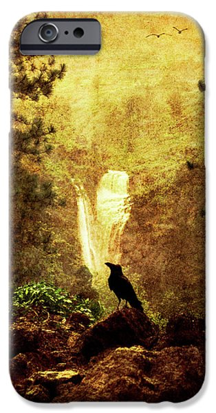 Crows Photographs iPhone Cases - Felt Mountain iPhone Case by Andrew Paranavitana
