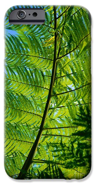 Best Sellers -  - Overhang iPhone Cases - Fern Detail iPhone Case by Himani - Printscapes