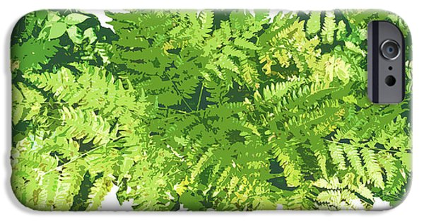 Green Foliage iPhone Cases - Fern Vignette iPhone Case by JQ Licensing