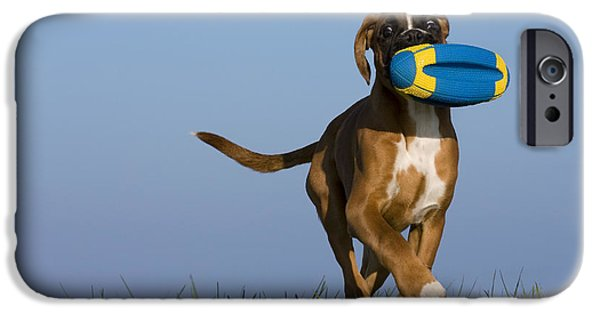 Boxer iPhone Cases - Fetching Boxer Puppy iPhone Case by Jean-Louis Klein & Marie-Luce Hubert