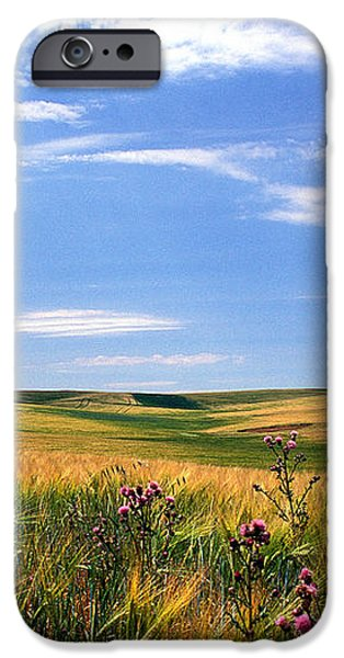 Field of Dreams iPhone Case by Kathy Yates