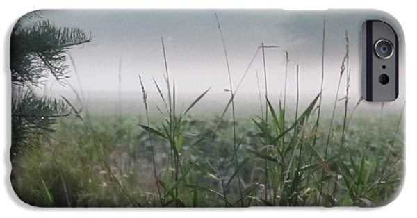 Mist iPhone Cases - Field of Fog iPhone Case by Kirsten Tendall