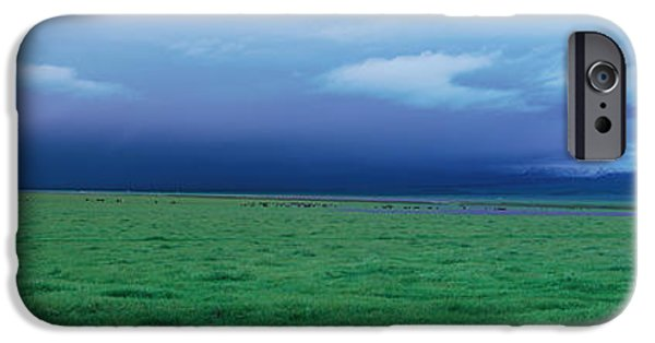 Winter Storm iPhone Cases - Field Of Grass Under Winter Storm iPhone Case by Panoramic Images