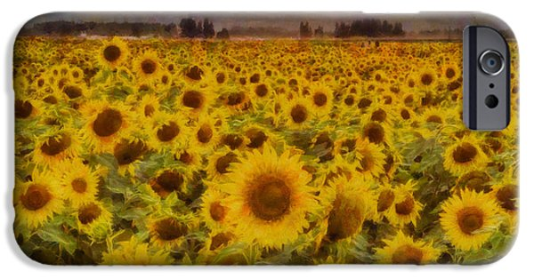 Crops iPhone Cases - Field of Sunflowers iPhone Case by Mark Kiver