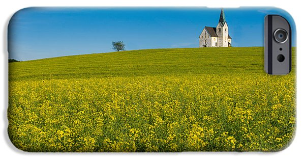 Crops iPhone Cases - Fields of gold iPhone Case by Blaz Gvajc