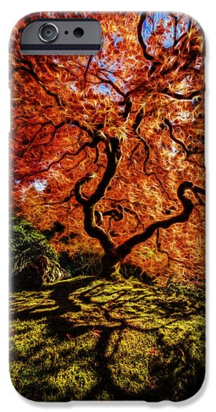 Red Abstract iPhone Cases - Fiery Japanese Maple D1369 iPhone Case by Wes and Dotty Weber