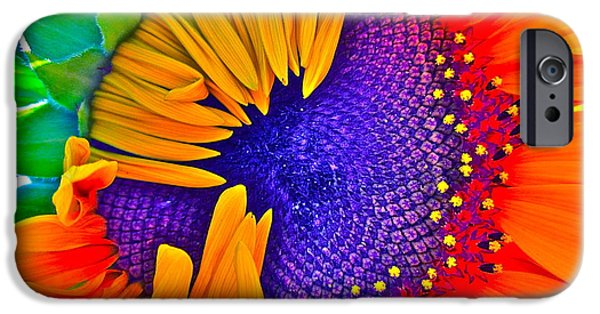 Sunflower Photograph iPhone Cases - Fiesta iPhone Case by Gwyn Newcombe