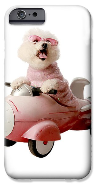 Fifi is ready for take off  iPhone Case by Michael Ledray