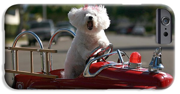 Fuzzy Digital iPhone Cases - Fifi the bichon frise to the Rescue iPhone Case by Michael Ledray
