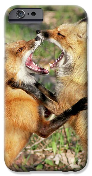 Crocks iPhone Cases - Fight Club II iPhone Case by Mircea Costina Photography