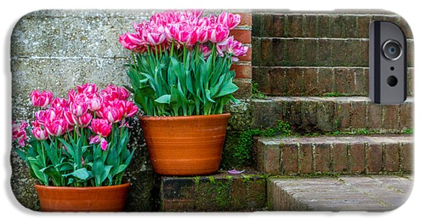 Bill Gallagher iPhone Cases - Filoli Tulips iPhone Case by Bill Gallagher