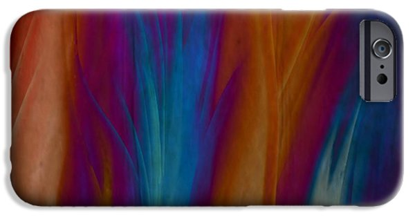 Gina Lee Manley iPhone Cases - Fire Dance iPhone Case by Gina Lee Manley