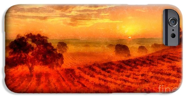 California Vineyard iPhone Cases - Fire of a New Day iPhone Case by Edward Fielding