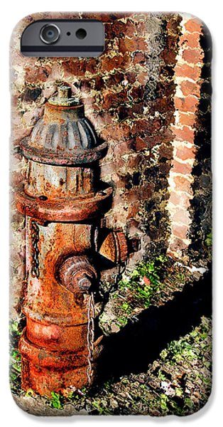 Fire Hydrant iPhone Cases - Fire Plug iPhone Case by Colleen Kammerer