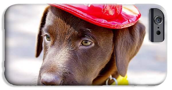 Chocolate Lab iPhone Cases - Firefighter Pup iPhone Case by Toni Hopper