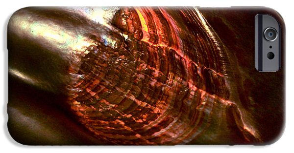 Shells iPhone Cases - Firestorm iPhone Case by Rona Black