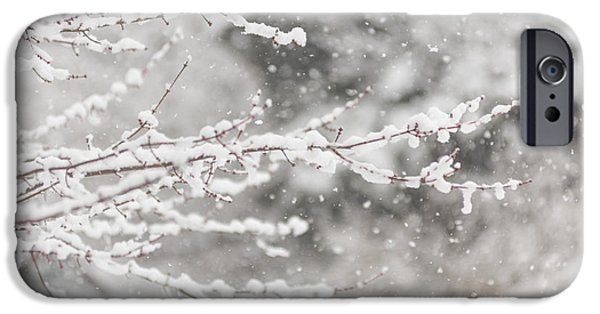 Snowy Day iPhone Cases - First Day of Spring 2015 New Jersey iPhone Case by Terry DeLuco