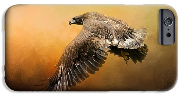 United States iPhone Cases - First Flight iPhone Case by Jai Johnson