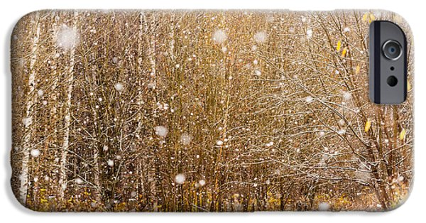Snow Flake iPhone Cases - First Snow. Snow Flakes I iPhone Case by Jenny Rainbow