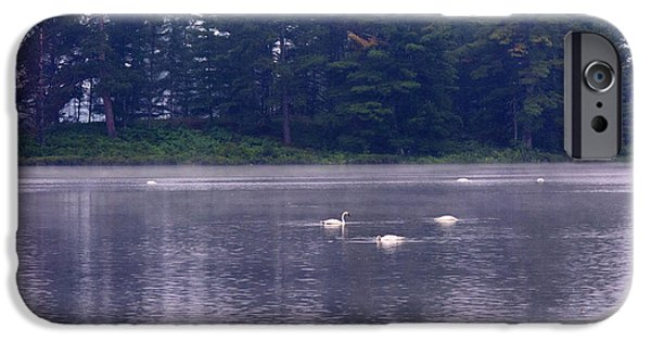Swans... iPhone Cases - Fishing Time iPhone Case by Linda Kerkau