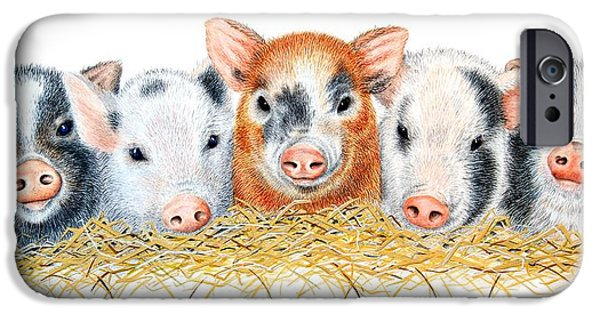 Animal Drawings iPhone Cases - Five Little Pigs iPhone Case by Sandra Moore