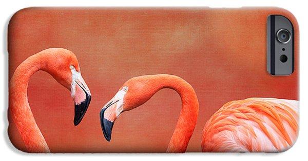 Flamingoes iPhone Cases - Flamboyant Flamingos iPhone Case by Tom Mc Nemar