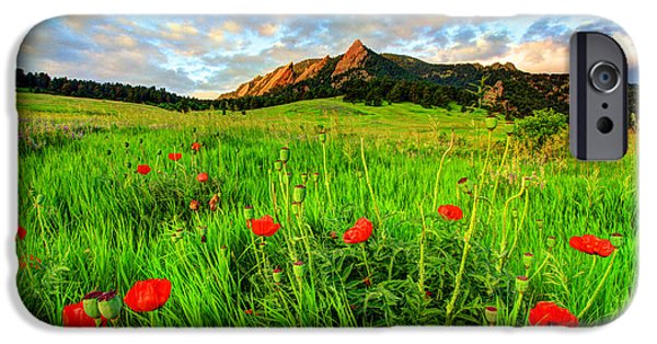 Fort Collins Photographs iPhone Cases - Flatiron Poppies iPhone Case by Scott Mahon