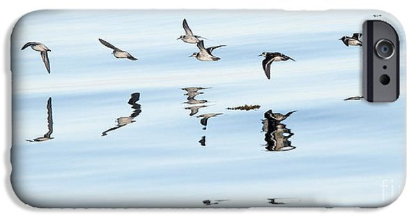 Flight iPhone Cases - Flight Illusion iPhone Case by Mike Dawson