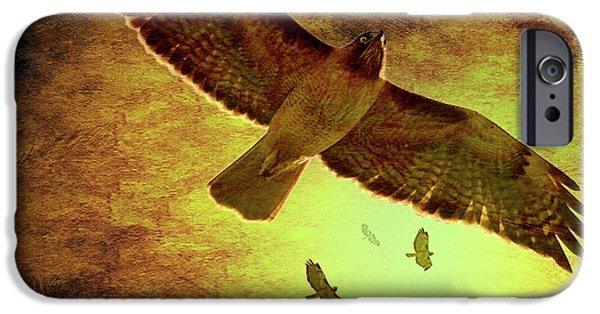 Red Tail Hawk Digital Art iPhone Cases - Flight of the Golden Hawks . 7D5066 iPhone Case by Wingsdomain Art and Photography